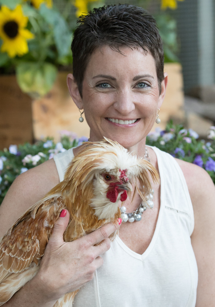 """Kathy Shea Mormino calls sweaters for chickens """"inappropriate."""""""