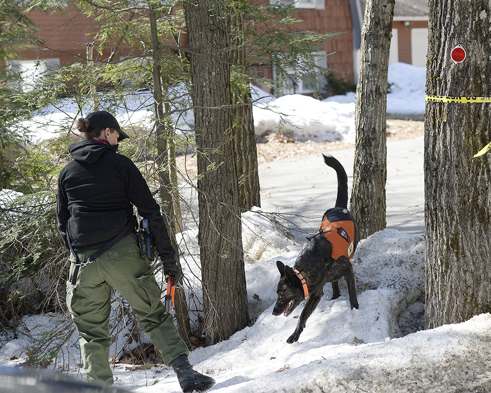 A warden with a K-9 search Thursday near the home in Arundel where Maine State Police are investigating the death of 63-year-old Matthew Coito. His wife, Sue Coito, who has dementia, is missing.
