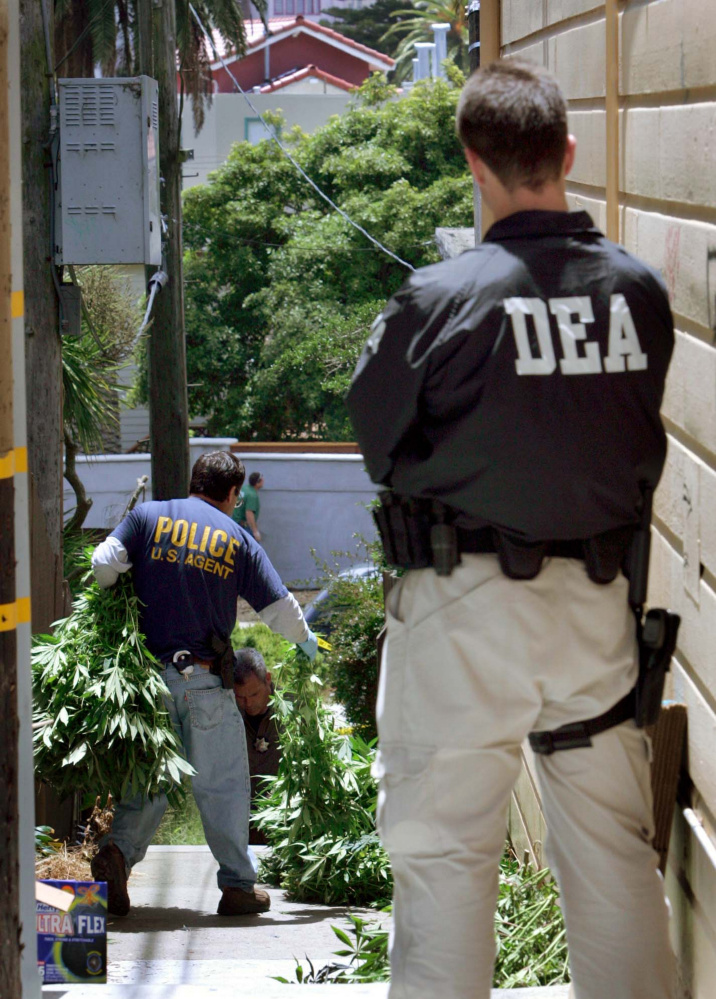 DEA agents haul away a cache of  marijuana plants from a San Francisco dispensary in 2005. With Jeff Sessions running the Justice Department, federal policy and enforcement are likely to return to a tough-on-crime approach.
