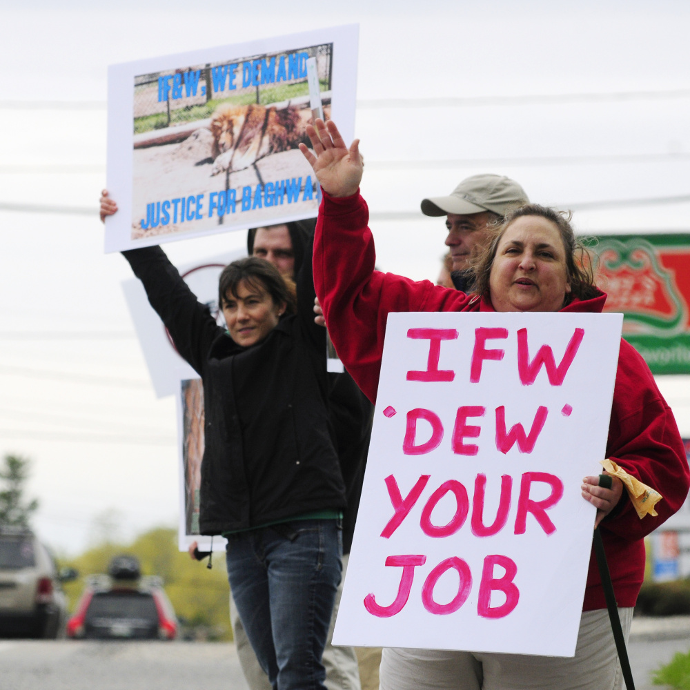 About a dozen protesters hold signs Friday outside the Maine Department of Inland Fisheries & Wildlife headquarters in Augusta, demanding that the department investigate DEW Haven in Mount Vernon.