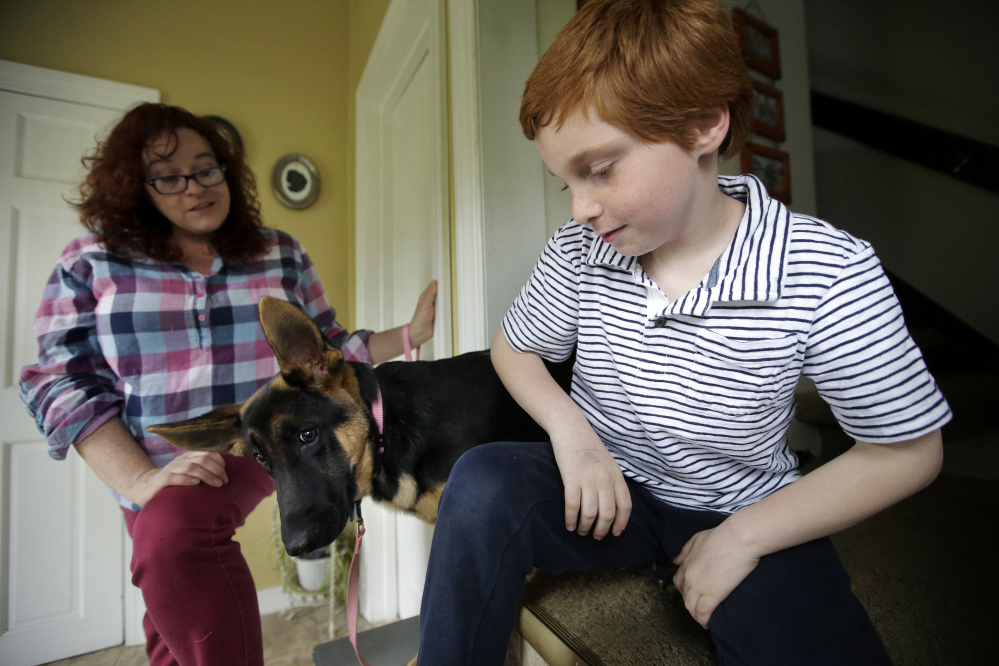 Susan Grenon talks with her son, Pauly, as he sits with their German shepherd at their home in Smithfield, R.I. A bill in Rhode Island would allow kids like Pauly to reapply sunscreen on themselves at school without a doctor's note.