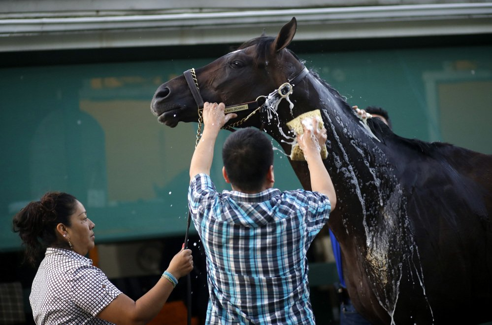 Kentucky Derby winner Always Dreaming is washed after a workout at Pimlico Race Course in Baltimore on Wednesday. The Preakness Stakes is Saturday.