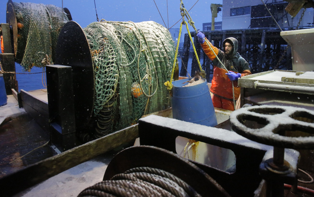 Shawn Keppler guides a bucket of cod out of the hold of the Jamie & Ashley at the Portland Fish Pier in 2014.