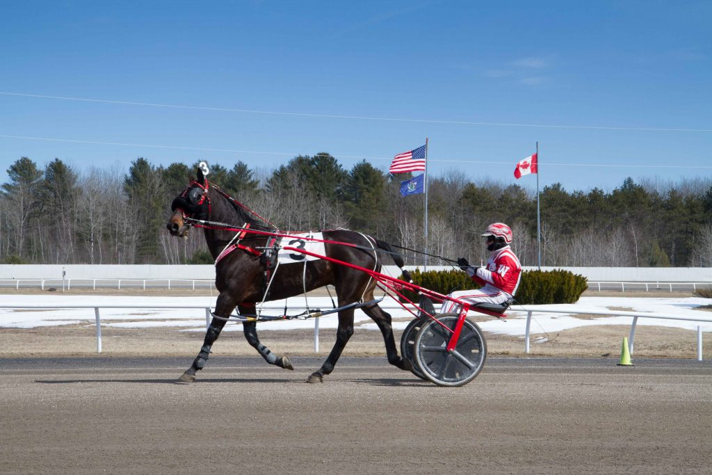 Horse racing in maine portland press herald for Charlie s motor mall augusta maine