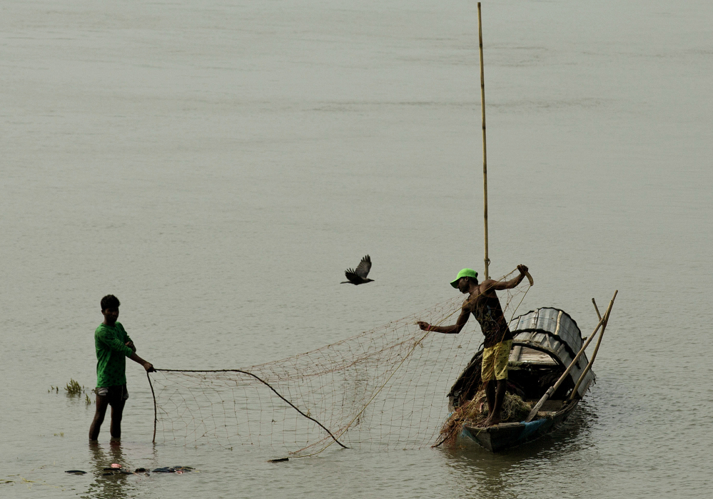 India 39 s fishermen net gain from conservation portland for Fishing store portland