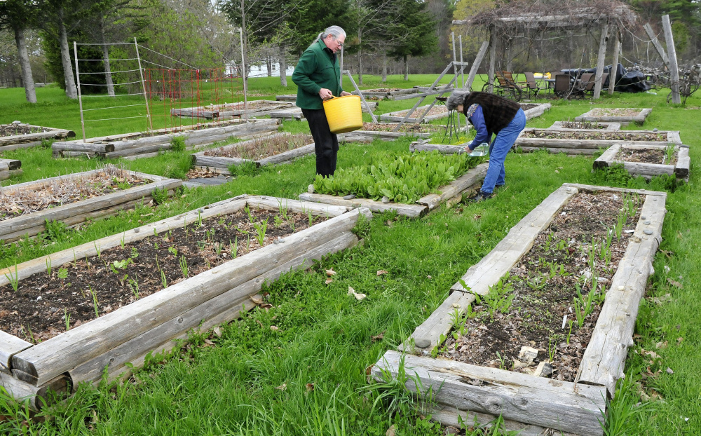 Phil Frizzell and his wife, Connie Bellett, water vegetables in the Community Garden they started May 10 in Palermo. The couple hauled the water from the Windsor Town Office, eight miles away. The Malcolm Glidden American Legion Post 163 has refused to connect a water supply to the rental space.