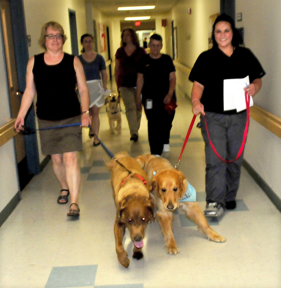 Kathy Peterson, left, and Daisi Poole, handlers with Love on a Leash, lead Charlie and Bentley into Mount St. Joseph Residence and Rehabilitation in Waterville on June 13. The dogs and handlers visited and interacted with residents.