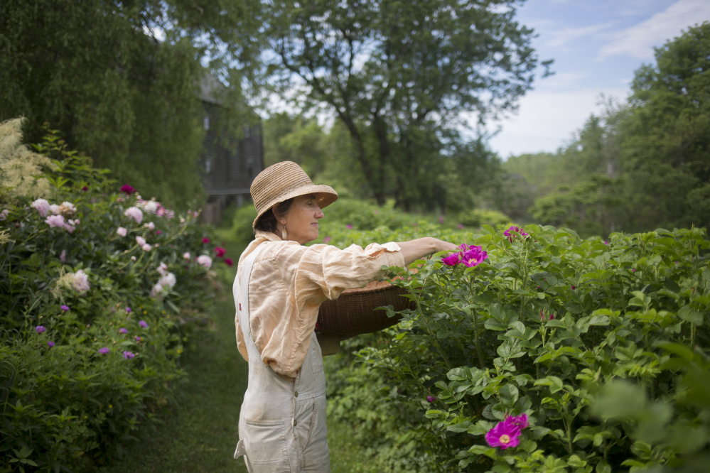 Cultivating The Art Of Practical Magic On A Rockport Farm