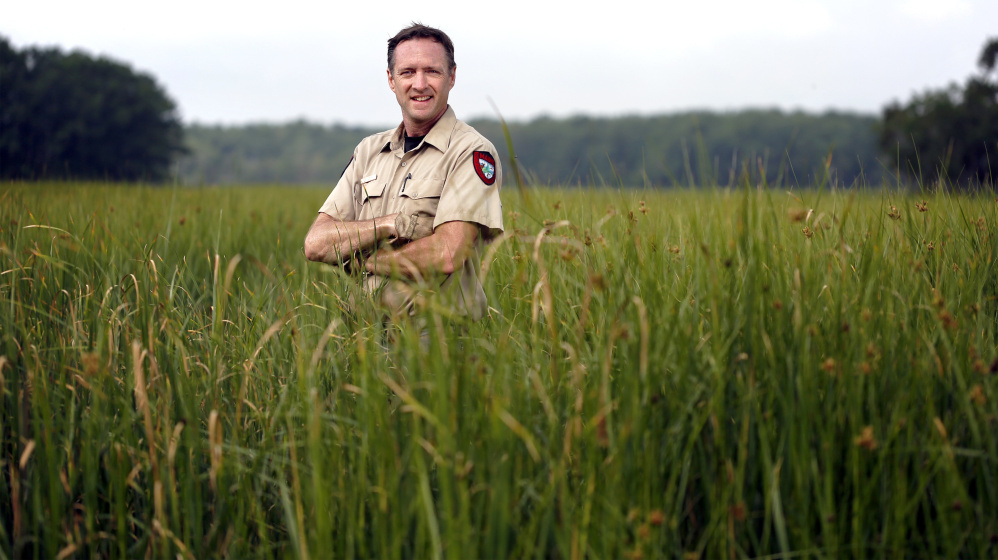 Minimize problems being caused by wildlife, advises Scott Lindsay, pictured at Scarborough Marsh, without catching the wildlife.