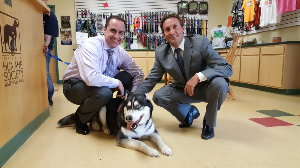Darrick Banda, left, and David Bobrow, both attorneys for Matthew Perry, pose with Dakota the husky at the Humane Society Waterville Area.