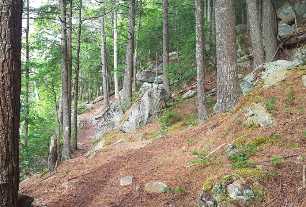 Thorne Head Narrows trail in Bath offers impressive views of the Kennebec River. It's part of the 96-acre signature property of the Kennebec Estuary Land Trust.