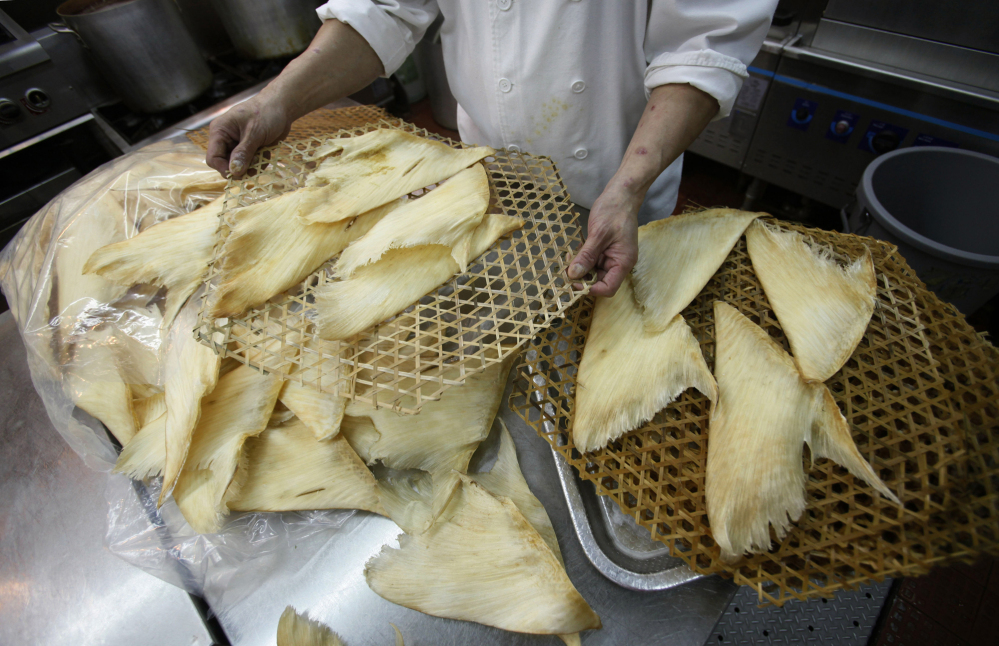 Joe Chan, chief chef at Sun Tung Lok Chinese Cuisine in Hong Kong, prepares shark fins for cooking. Shark fins are most often used in a soup considered a delicacy in Asia.