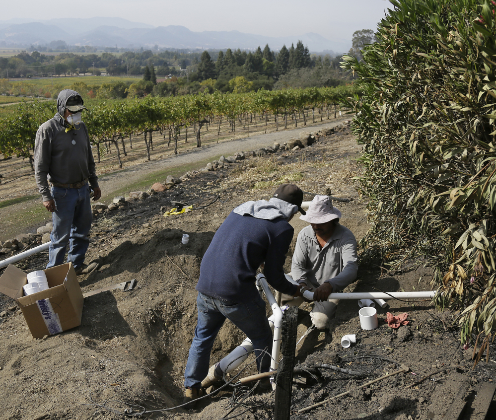 Workers begin repairs to a damaged irrigation pipe at the wildfire-damaged Signorello Estate winery in Napa, Calif., where blazes have bought much of the region's tourist-dependent economy to a standstill.