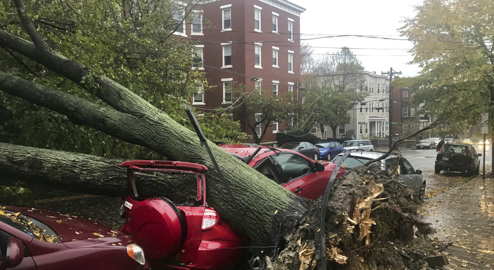 Climate change increases the likelihood of severe weather, like the recent storm that toppled this and thousands of other trees, but Gov. LePage, who once said,