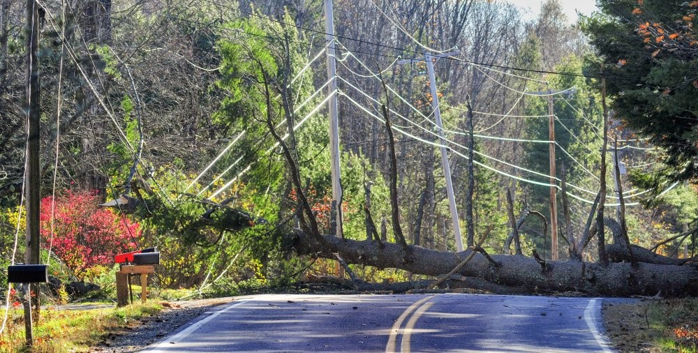 A fallen tree hung up in wires blocks Route 41 in Readfield on Friday. The Readfield Fire Department had the road closed from Route 17 to Nottingham Way as they waited for Central Maine Power to get there.