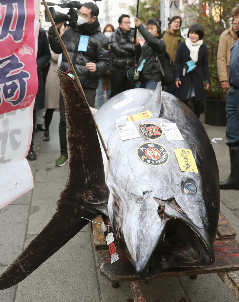 Final New Year auction held at Tsukiji market