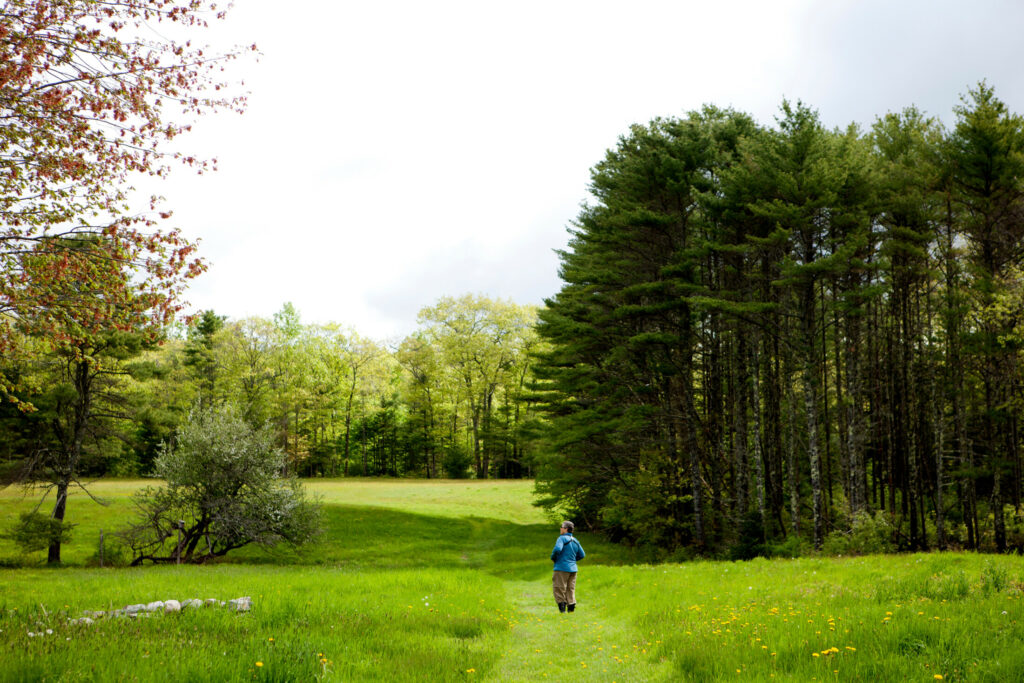 A birder pauses at Pettengill Farm in Freeport on a walk that's part of the L.L. Bean-Maine Audubon Birding Festival in 2018. Photo courtesty of Maine Audubon.