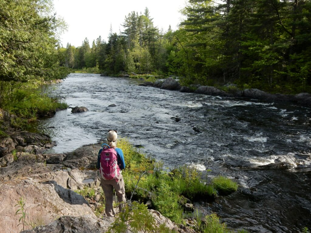 A hiker enjoys the view along the Seboeis River Trail.