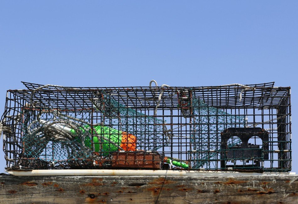 Four men charged with cutting dozens of rival lobsterman's traps