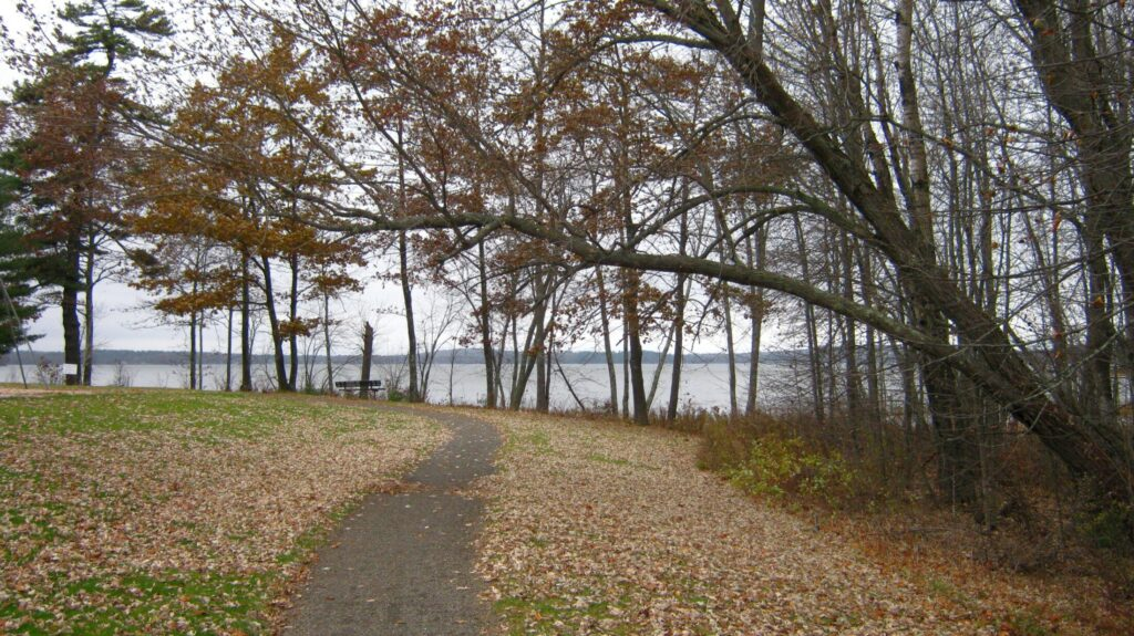 The walking track in the park near Unity Pond in October 2009.