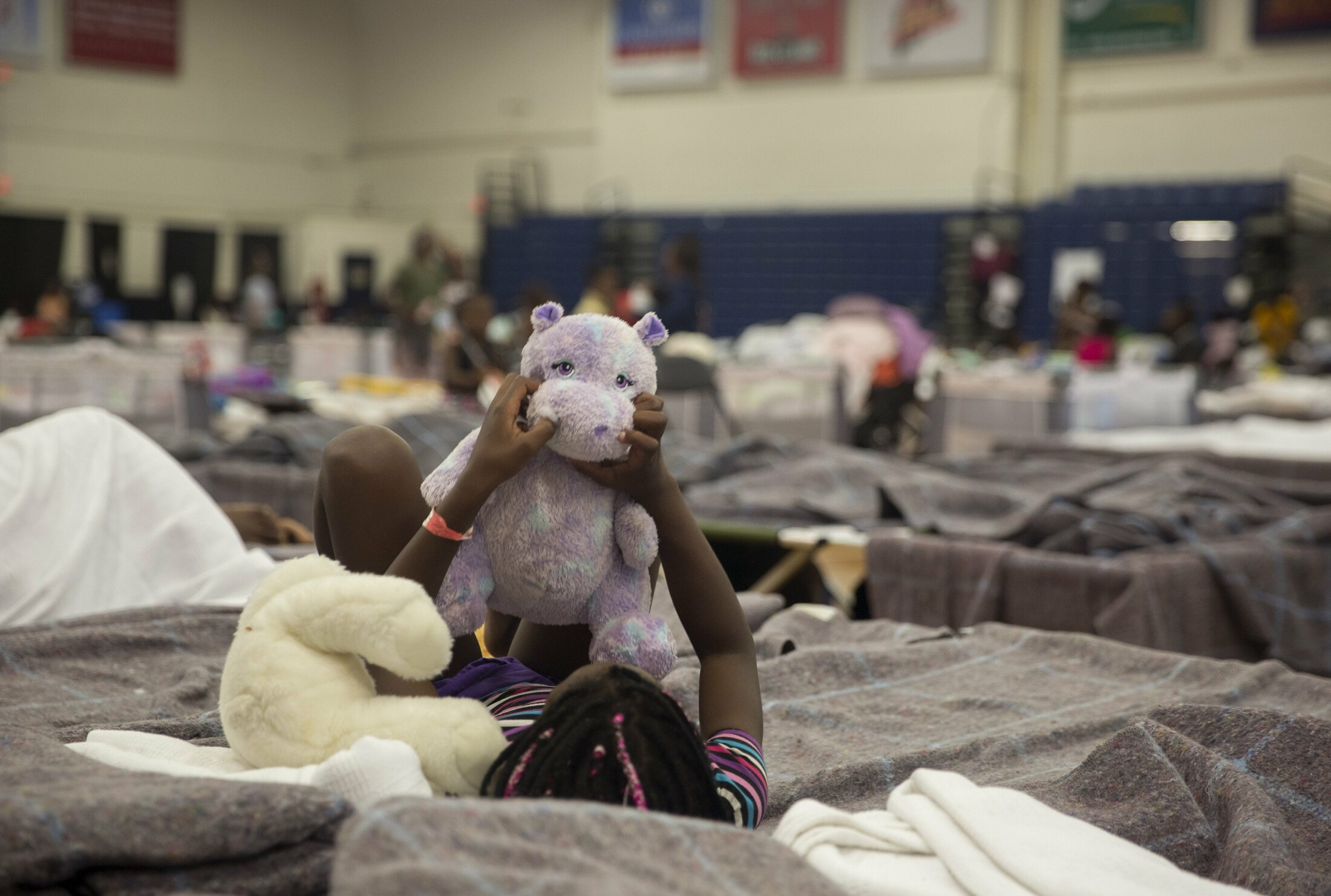 A girl plays with a stuffed animal on her cot at the Portland Expo. Asylum seekers, mostly from Angola and the Democratic Republic of the Congo, have been living at the temporary shelter at the Portland Expo for about a month. Brunswick is trying to make arrangements to host 30 to 40 people in housing at Brunswick Landing.