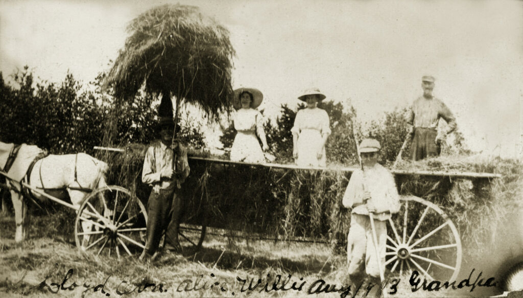 Francis Kennedy and family bringing in the hay in Somerville in 1913.