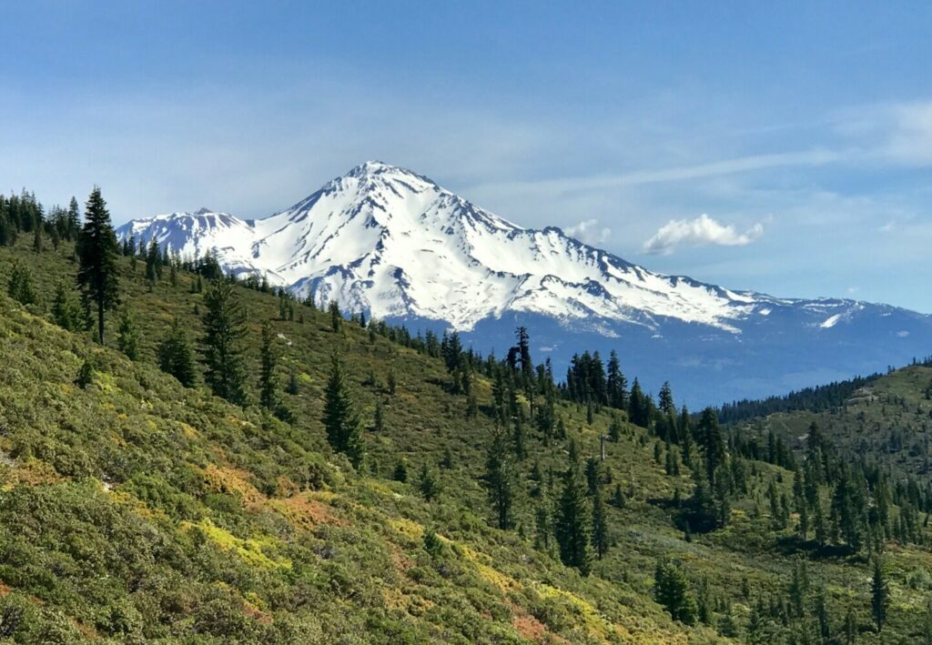 Majestic Mt. Shasta from the Pacific Crest Trail in the Shasta-Trinity National Forest.