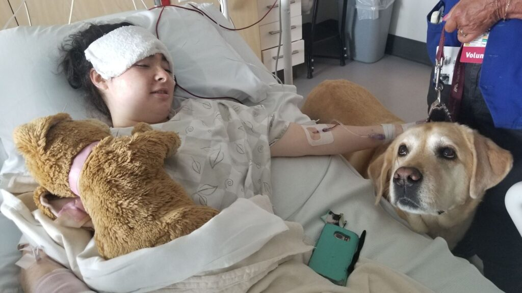 This photo from Glen Hilt's GoFundMe fundraising page shows Emily Miller with Mosley, a hospital therapy dog, after her surgery Tuesday.