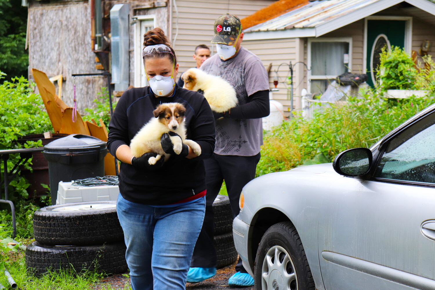 Contributions Needed To Provide For Animals Rescued From