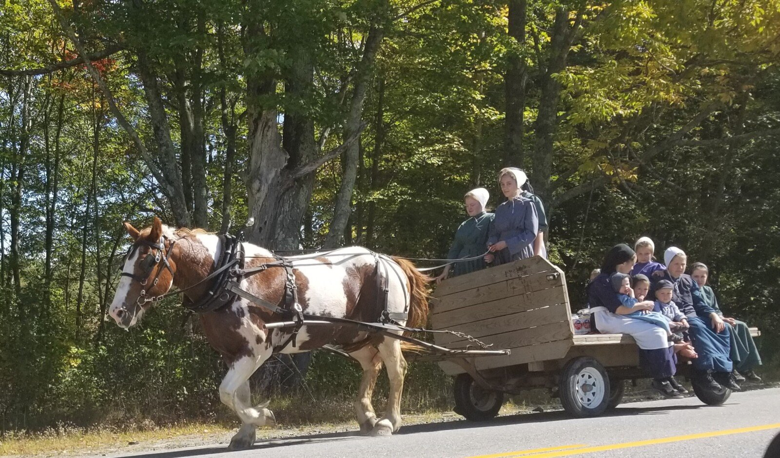 Amish community plans to farm in tiny Wales | Lewiston Sun Journal