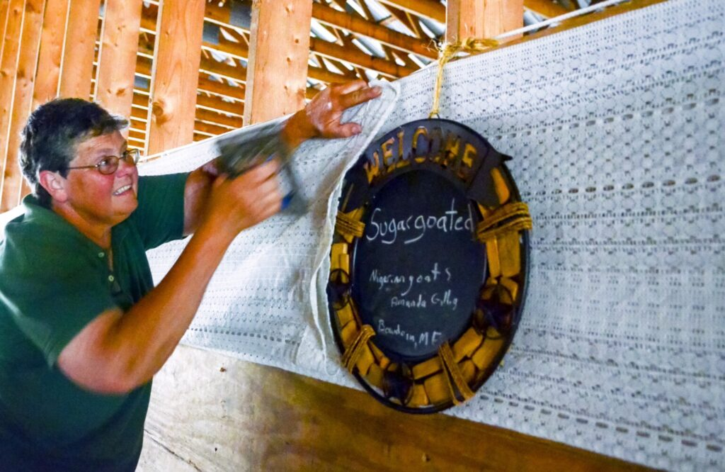 Ramona Stinson staples cloth around signs in a livestock barn at the Litchfield Fair on Wednesday. She said that they were putting the sign and decorations up so high because if they didn't their goats might eat them.