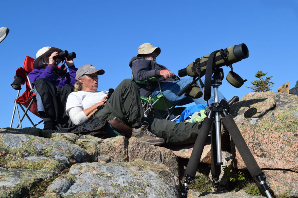Carol Thompson, in white, Acadia's lead Hawk Watch volunteer, scans the sky for raptors on a recent morning.