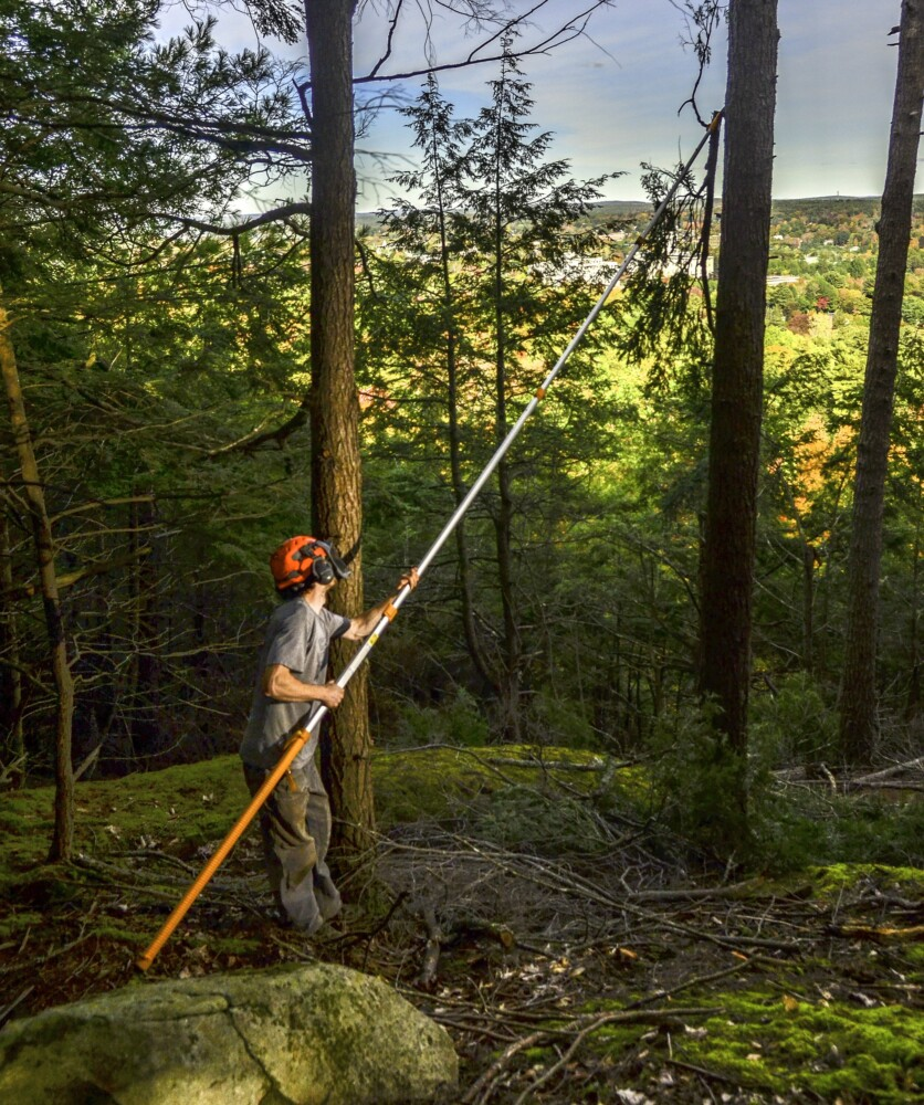 Tyler Keniston, Kennebec Land Trust stewardship assistant, cuts branches Tuesday to open of view of Maine State House in the Howard Hill Historical Park in Augusta.