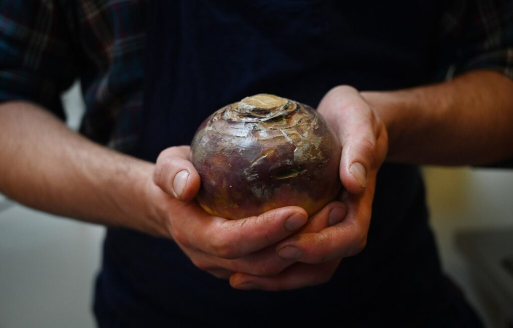 Looking for an adventure while you are stuck at home? Try cooking a rutabaga.