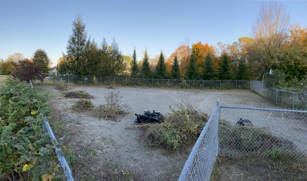 The dog park at Hallowell's Vaughn Field seen Monday afternoon after a small group cleaned up overgrown weeds on Sunday.