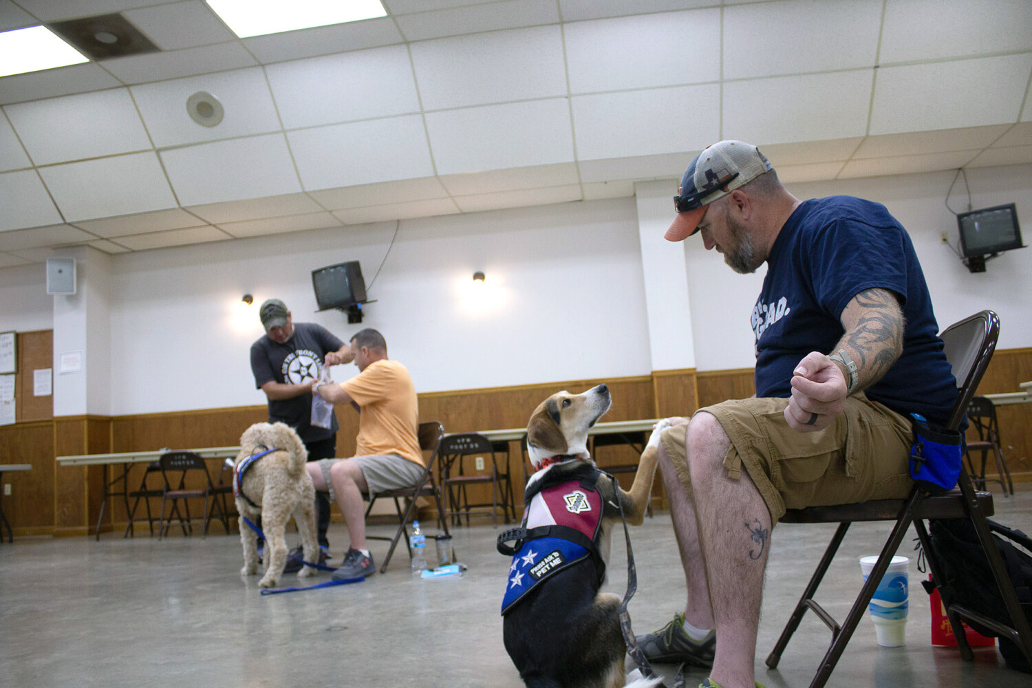 K9s on the Front Line pairs veterans with a dog who has their back - CentralMaine.com