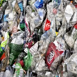 Recycling_Bottles_12778