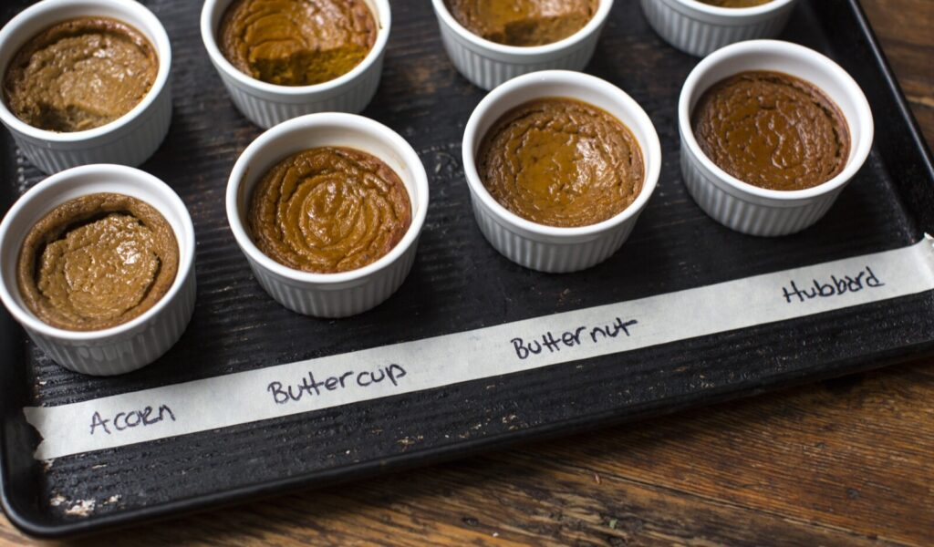 The filling for squash custard pie is tested here with different varieties of  local squash.