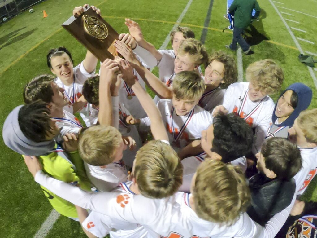 NYA celebrates after beating Richmond 2-1 in the Class D South regional final Wednesday at Don Roux Field in Lewiston.
