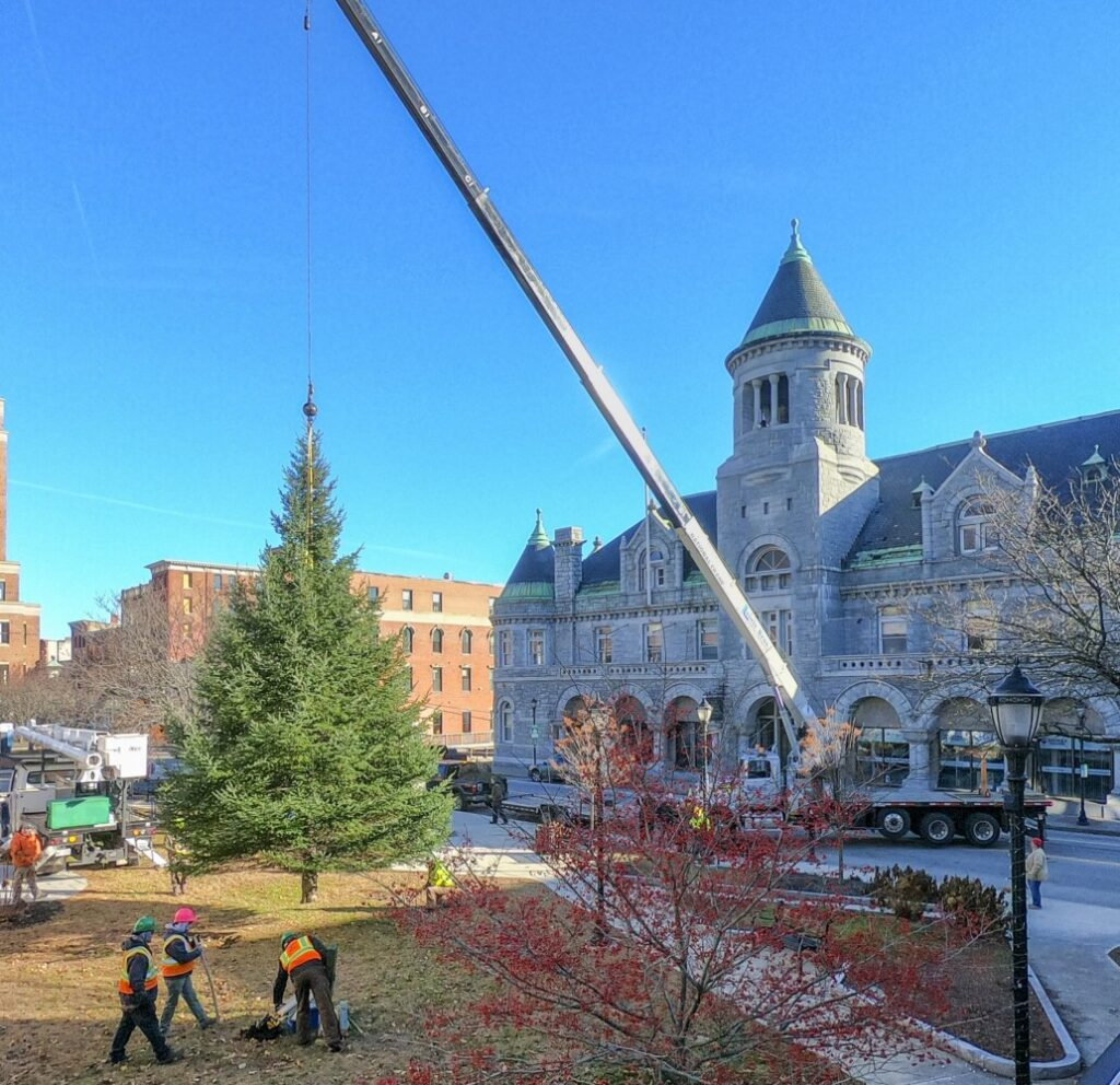 A Lajoie Brothers crane moves a 40-foot tall fir tree into place on Saturday November 23, 2019 in Market Square in downtown Augusta. (Staff photo by Joe Phelan/Staff Photographer)