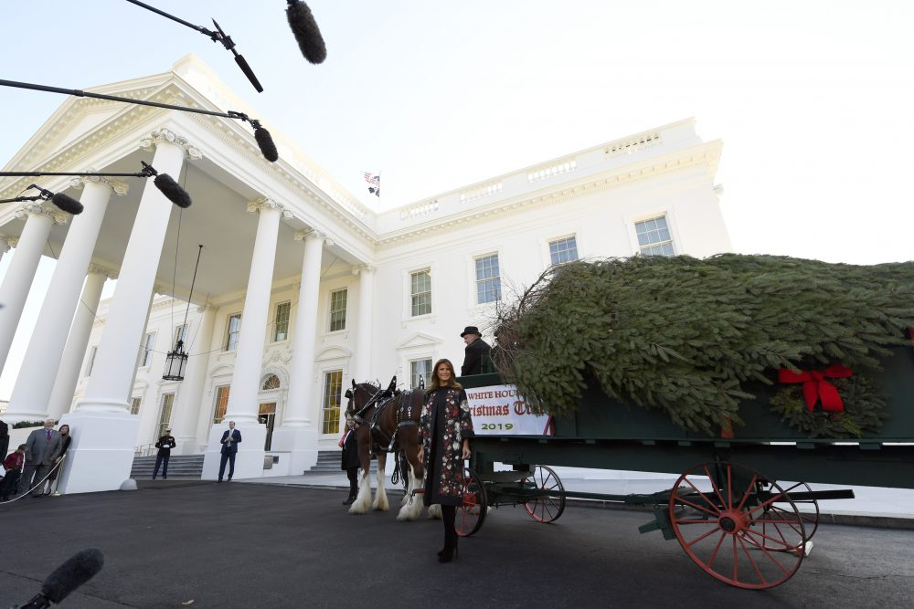 First lady Melania Trump poses with the 2019 White House Christmas tree as it is delivered to the White House in Washington, Monday.