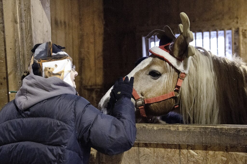 Carol Wyse-Ricker of Auburn gives Sarge some attention Saturday during the Winter Solstice Warm Feast for Horses and Cookie Swap at Maple Hill Farm in Auburn.