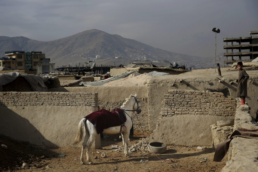 An Afghan boy stands on a wall near a horse tied up at a camp for internally displaced people in Kabul, Afghanistan, Monday. Tens of thousands of internally displaced Afghans live in camps, which lack basic facilities, across Afghanistan.