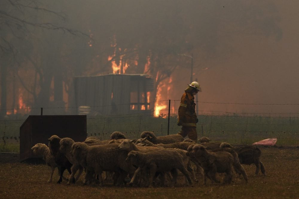 Rural Fire Service crew engage in property protection of a number of homes along the Old Hume Highway near the town of Tahmoor, New South Wales, as the Green Wattle Creek Fire threatens a number of communities in the southwest of Sydney.