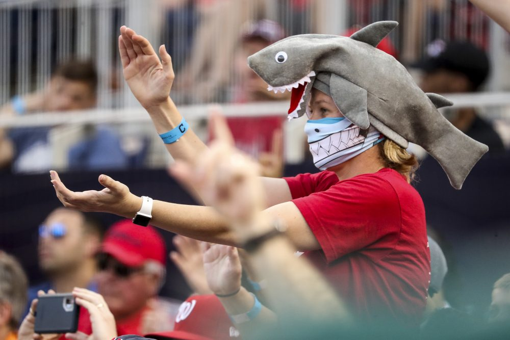 """A fan wears a shark hat at a Washington Nationals' game in Washington on Sept. 29. Creators of the viral video """"Baby Shark,"""" whose """"doo doo doo"""" song was played at the World Series in October, are developing a version in Navajo."""