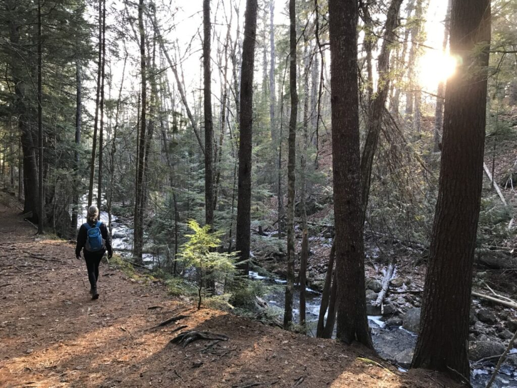 A hiker walks along the Peters Brook Trail in Blue Hill, part of the Blue Heritage Trust's extensive trail system.