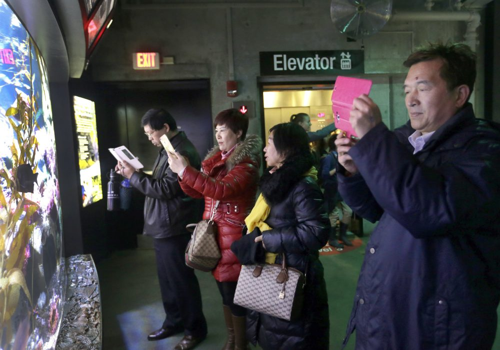 Tourists from China take pictures at the New England Aquarium in Boston in 2017. With tens of millions of Chinese on lockdown and many others opting to avoid travel as the new coronavirus spreads, tourism around the globe is taking a heavy hit.