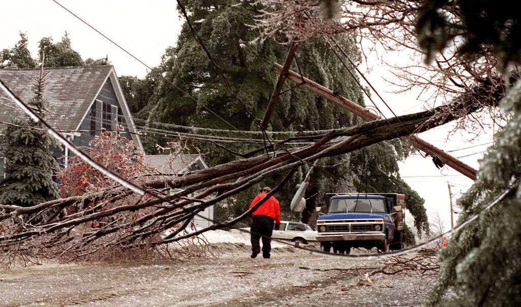 A town official in Farmingdale inspects ice damaged trees and power lines near the height of the ice storm on Jan. 8.