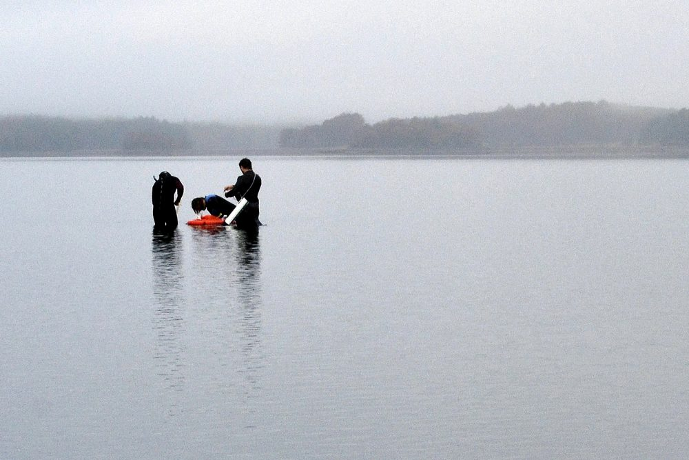 University of New Hampshire scientists monitor the health of seagrass in the Great Bay in Durham, N.H., in October 2019. Federal officials got an earful of complaints Wednesday night from scores of New Hampshire communities over a plan to further reduce nitrogen in one of the largest estuaries in the Northeast.