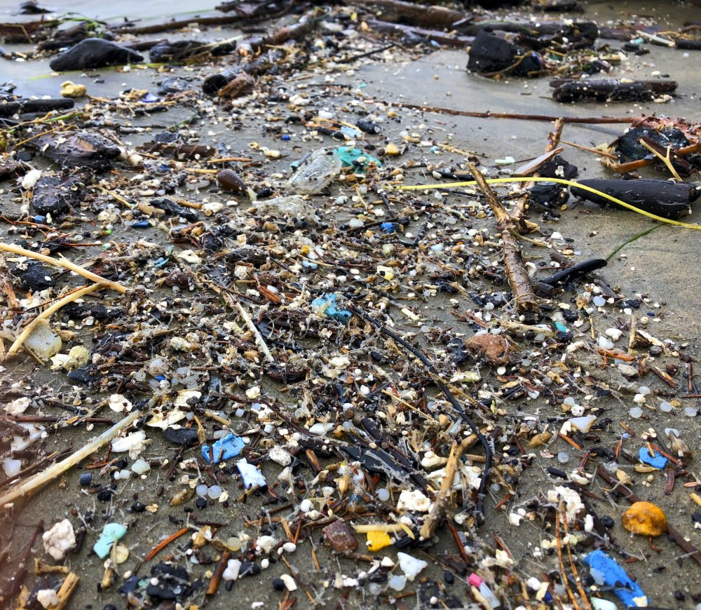 Microplastics_Risk_88092